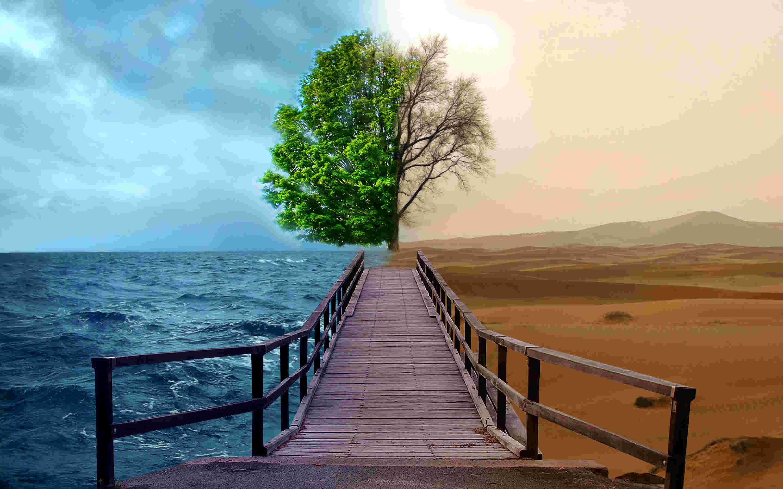 کاهش 50 پلهای رتبه ایران طی 10 سال در حوزه محیط زیست
